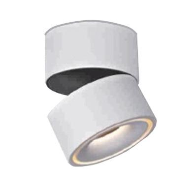 Halo Light Simple Plafon de techo Led